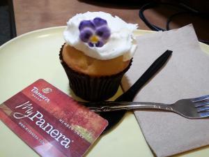 Panera cupcake
