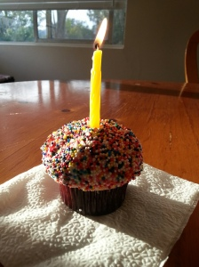 birthday cupcake sprinkles candle lonely