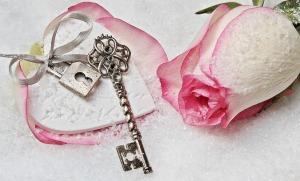 Key rose romance snow